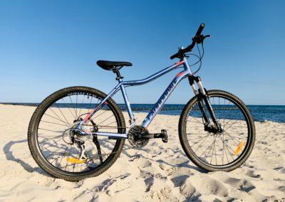 Drahtesel Fahrradwerkstatt
